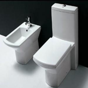 one-piece-toilet