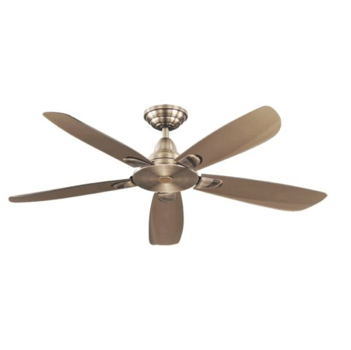 Amasco-Fresh-5-50-inch-ceiling-fan-Antique-Brass
