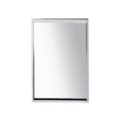 NTL JW Mirror
