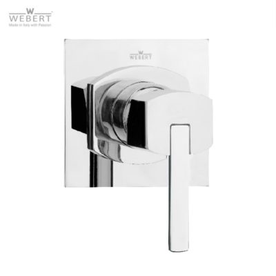 AA Concealed Shower Mixer