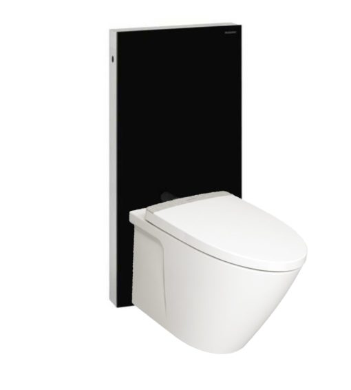 American-Standard-TF3229-with-Geberit-Monolith-BLACK