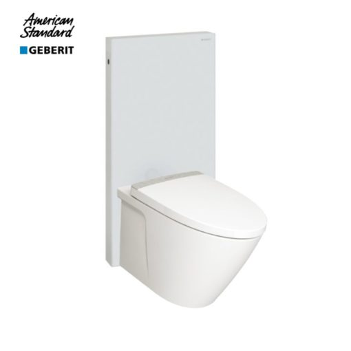 American-Standard-TF3229-with-Geberit-Monolith-WHITE-1