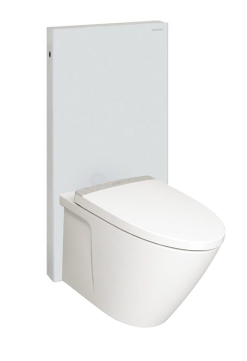 American-Standard-TF3229-with-Geberit-Monolith-WHITE