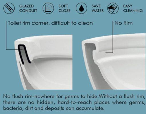 Benefits of Rimless Flushing