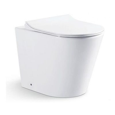 WC10044-Back-To-Wall-Water-Closet